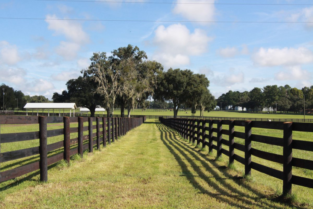 How to create a horse farm: Fencing